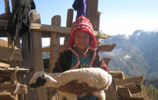 nepal mountain boy with goat